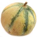 Melon bio (petite pièce)