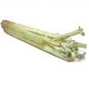 Cardons bio (1kg)