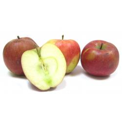 Pommes Dalinco bio (1kg)