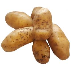 Pommes de terre delicatess (kg)