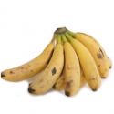 Bananes bio des Canaries (800g)