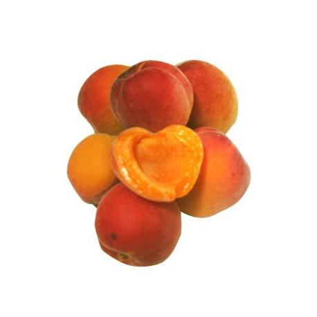 Abricots bio (1kg)