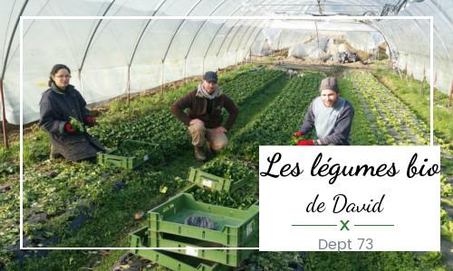 légumes david